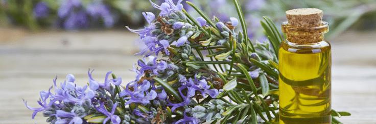 Les huiles essentielles sont des merveilles offertes par la nature. Profitons-en !